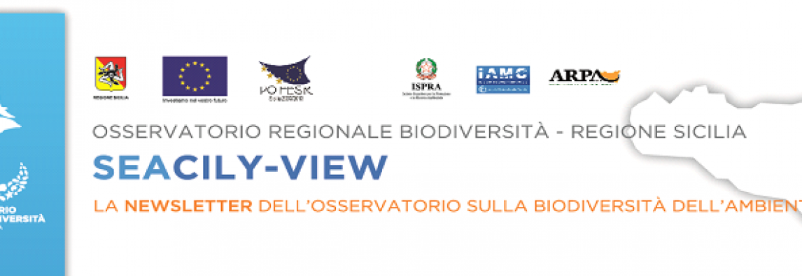 Seacily-view – Biodiversità dei banchi dello Stretto di Sicilia e le ultime notizie dal web