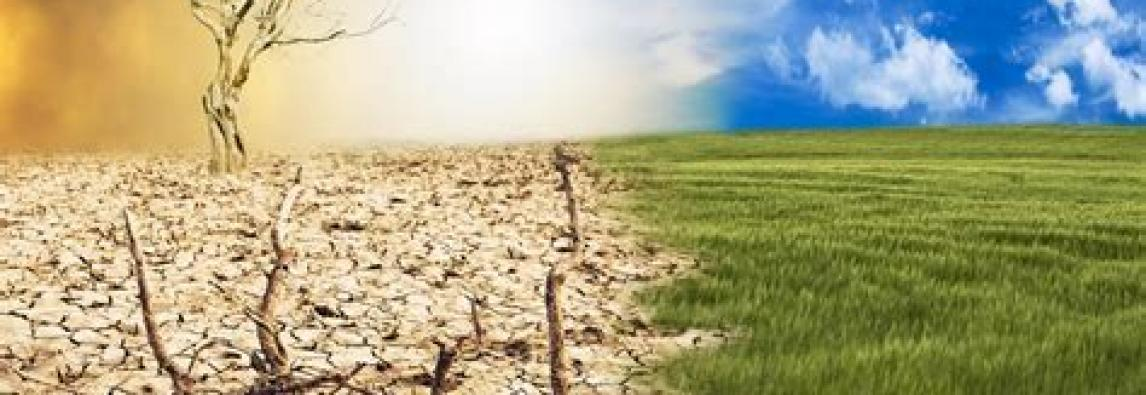 Studio sul clima di Enea e Confcommercio –   Il riscaldamento globale minaccia le coste italiane Patto per la prevenzione
