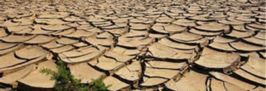 Clima, conferma Nasa: 2016 l`anno più caldo +1,1 gradi da fine `800